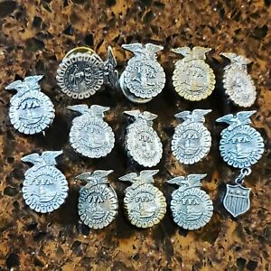 RARE VINTAGE LOT OF 13 FFA FUTURE FARMERS OF AMERICA VOCATIONAL EAGLE PINS LOOK!