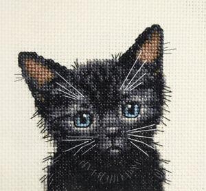 Black Cat, kitten  Lucky Full counted cross stitch kit + all materials Fido