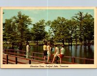 Vintage Postcard Public Pier Shoreline View Reelfoot Lake State Park Tennessee