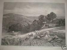 A Surrey Corn-Field V Cole 1861 print