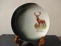 Circa 1910 Souvenir Plate North Creek Adirondack Mountains New York Big Buck