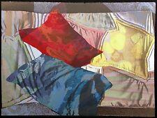 """Paula Crane """"Soft Disguises III"""" Hand Signed Art Serigraph pillows MAKE AN OFFER"""