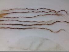 "100% Human hair handmade Dreadlocks 100 pcs 8-14"" sisterlock replacement blonde"