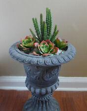 5 Artificial Plants Snow Lotus Cactus Desert Succulent Grass