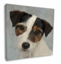 """Jack Russell Terrier Dog 12""""x12"""" Wall Art Canvas Decor, Picture Prin, AD-JR6-C12"""