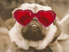 Papyrus Valentine's Day Card - Dog in Red Sunglasses -