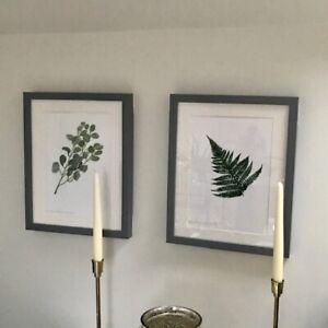 Fern Original Art Prints - Framed - Unframed - Eucalyptus Prints -