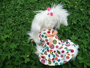 S beautiful dog dress