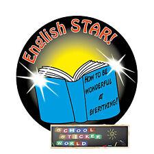 48 Teacher Reward Sticker 30mm English Reading Writing Spelling Literacy SPAG