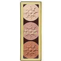 PHYSICIANS FORMULA Bronze Booster Highlight & Contour Palette MATTE SCULPTING 10