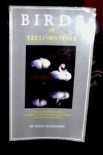 Birds of Yellowstone by Karen McEneaney and Terry McEneaney (1998, Paperback)