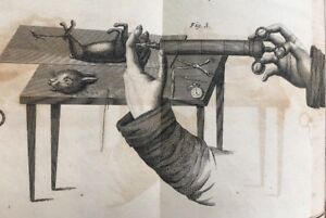 1813 Medical Experiments The Principle Of Life Early  Animal Testing