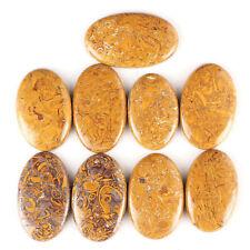 9 Pcs Beautiful Natural Marium Jasper Wholesale Stones 35mm-42mm - 417.60 Cts