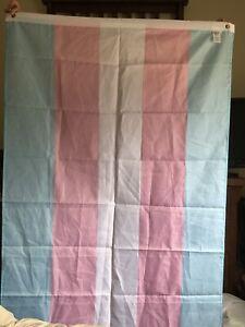Beautiful Transgender Pride Flag