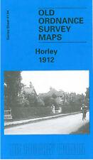 OLD ORDNANCE SURVEY MAP REIGATE 1895 BELL STREET HATCHLANDS CORNER WRAY PARK