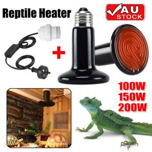 100/200W Reptile Brooder Incubator Blub Ceramic Infrared Light Heat Emitter Lamp