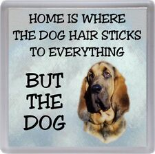 "Bloodhound Dog Coaster ""Home is Where the Dog Hair Sticks ."" by Starprint"