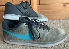 Nike P-Rod SB Grey Shoes / Trainers (UK Size 9)