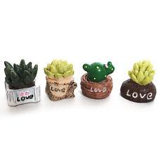 Dollhouse 4Pcs Set Lovely Succulent Plant Bonsai Miniature Decor Accessories