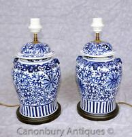 Pair Kangxi Blue and White Porcelain Table Lamps Lights Chinese Urns