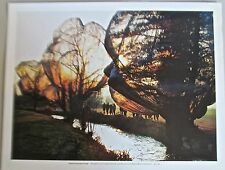 Christo & Jean Claude  Poster of Wrapped Trees -Basel 14x11 Offset Lithograph