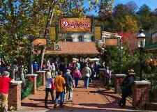 Dollywood single day admission