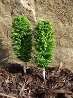 "10-STÜCK Jordan Bäume LAUBBÄUME BIRKE mit Fuß 12cm H0 ""MADE in GERMANY"" 3A-5"