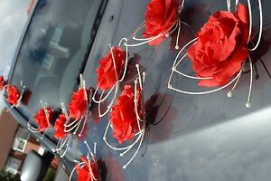 wedding car decorations prom butterflies RED