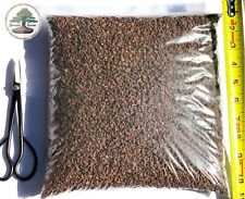 """5 lbs 1/8""""-1/4"""" Horticultural Lava Rock for Cactus and Bonsai Tree Soil"""