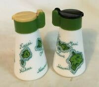 * Vintage Souvenir Salt & Pepper Shakers HAWAII HAWAIIAN ISLANDS milk glass