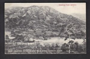 Jamaica GORDON TOWN Blue Mountain May Pole tree c1900/10s? PPC by Duperly