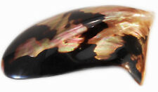 """One Polished Brownlip Oyster Shell 6-8"""" Mother of Pearl Beach Craft Inlay Decor"""