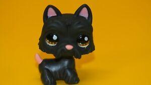 Authentic Littlest Pet Shop  Hasbro Original   LPS 1034