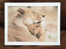 "KITTY/'S NOTE CARDS Set of 10 Envelopes /""Lazy Jaguar Day/"""