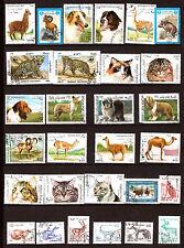 AFGHANISTAN  Les animaux sauvages et domestiques , chiens et chats  G 70