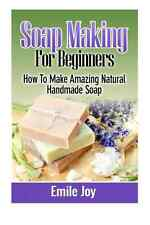 Soap Making For Beginners How To Make Book Handmade Crafts Hobbies  Home Gift