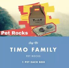 Timo Family (1)PET ROCKS Each Box, All The Fun Of Having A Pet.(PINK MO S COLOR)