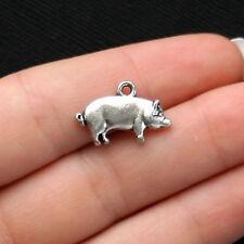 10 Pig Charms Antique Silver Tone - SC1429