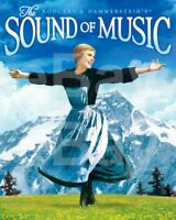 The Sound of Music (1965) Poster 10x8 Photo
