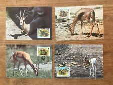 SOMALI 1992 four offical maxicards WWF with first day cancel - Gazelle