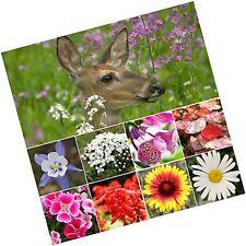 Bulk Package of 30,000 Seeds, Deer Resistant Wildflower Mixture (100% Pure Li.