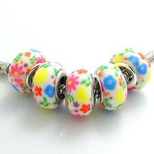 5pcs silver MURANO European  charm LAMPWORK beads color painted for bracelet #10