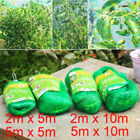 Anti Bird Net Bird-Preventing Netting Mesh for Fruit Crop Plant Tree Garden Home