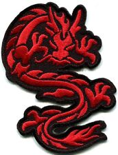 Chinese dragon kung fu martial arts tattoo applique iron-on patch Large S-362