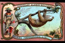 IMAGE CHOCOLAT GUERIN BOUTRON / INDIENNE & Mammifere AI d'AMERIQUE du SUD