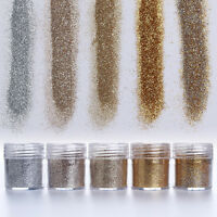 5g Nail Art Glitter Powder Dust Champagne Silver Super Fine Sheets