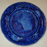 19th C. Dark Blue Historical Staffordshire Plate View Of Trenton Falls E W & S