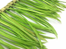 1 Yard - Lime Green Goose Biots Wholesale Feather Trim
