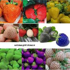Rare Strawberry Seeds 9 Types ( 90 Seeds) 10 seeds each type