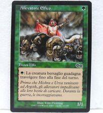 Magic The Gathering Saga di Urza ALLEVATORE ELFICO c n° 247 IT near mint